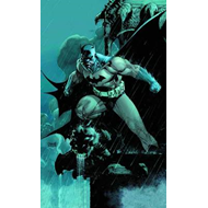 Absolute Batman: Hush (BOK)