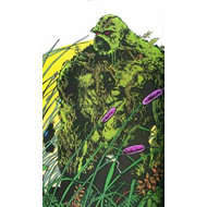 Saga of the Swamp Thing (BOK)