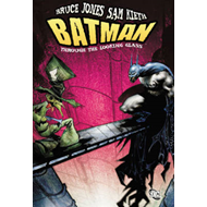 Batman: Through the Looking Glass (BOK)