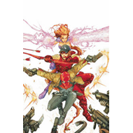 Red Hood and the Outlaws Volume 1:  REDemption TP (BOK)
