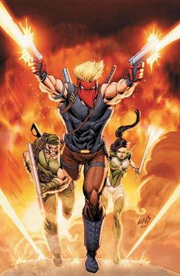 Grifter: Volume 2: New Found Power (The New 52) (BOK)