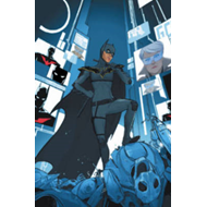 Batman Beyond Batgirl Beyond (BOK)