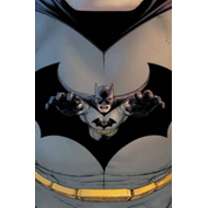 Absolute Batman Incorporated (BOK)