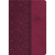 King James Study Bible: Second Edition (BOK)