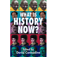 What is History Now? (BOK)