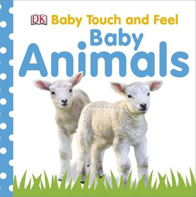 Touch and Feel Baby Animals (BOK)