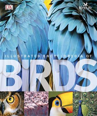 The Illustrated Encyclopedia of Birds (BOK)