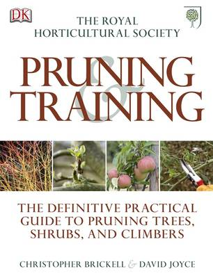 RHS Pruning and Training (BOK)