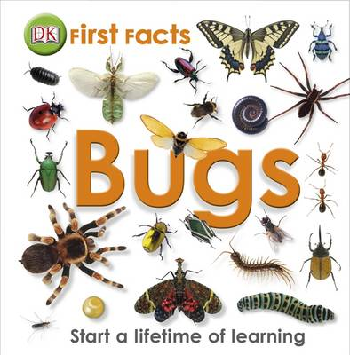 First Facts Bugs (BOK)