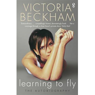 Learning to Fly (BOK)
