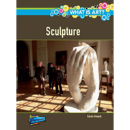 What is Sculpture? (BOK)