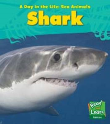 Sea Animals: Shark (BOK)