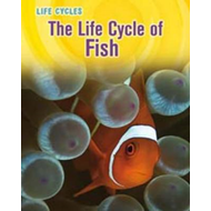 The Life Cycle of Fish (BOK)