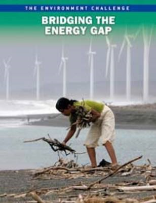 Bridging the Energy Gap (BOK)