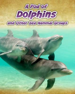 A Pod of Dolphins: and Other Sea Mammal Groups (BOK)