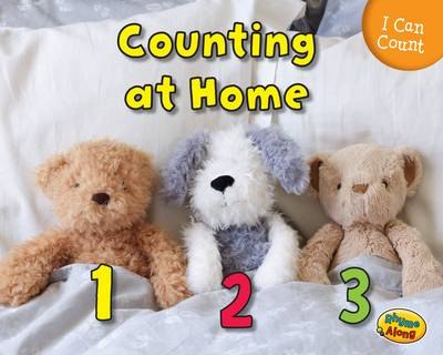 Counting at Home (BOK)