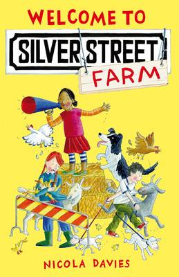 Welcome to Silver Street (BOK)