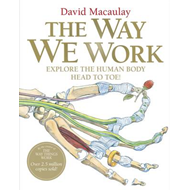 The Way We Work (BOK)