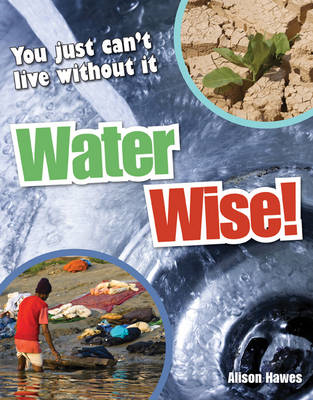 Water Wise!: Age 9-10, Average Readers (BOK)