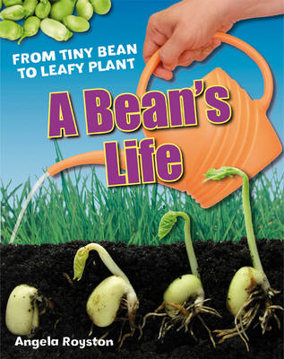 A Bean's Life: Age 6-7, Below Average Readers (BOK)