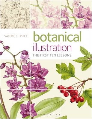 Botanical Illustration (BOK)