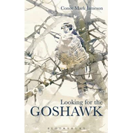 Looking for the Goshawk (BOK)