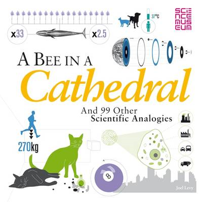 A Bee in a Cathedral: And 99 Other Scientific Analogies (BOK)