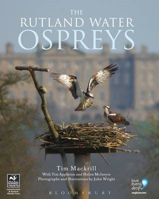 Rutland Water Ospreys (BOK)