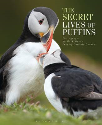 Secret Lives of Puffins (BOK)
