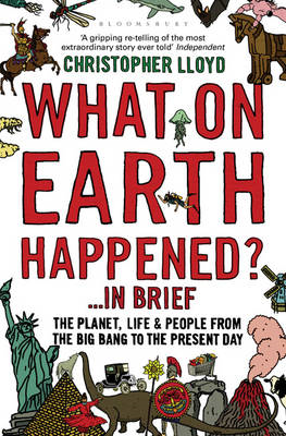 What on Earth Happened?... in Brief (BOK)