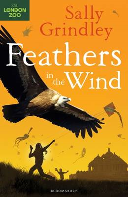 Feathers in the Wind (BOK)