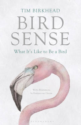 Bird Sense: What it's Like to be a Bird (BOK)