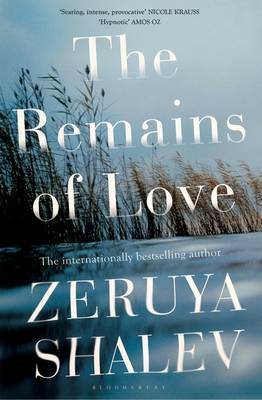 Remains of Love (BOK)
