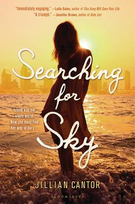Searching for Sky (BOK)