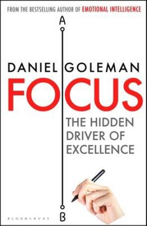 Focus - the hidden driver of excellence (BOK)