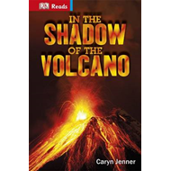 In the Shadow of the Volcano (BOK)