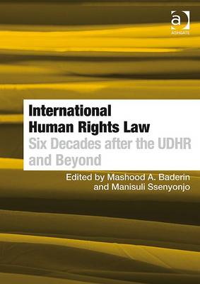 International Human Rights Law: Six Decades After the UDHR and Beyond (BOK)