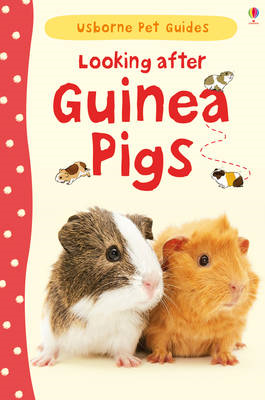 Looking After Guinea Pigs (BOK)