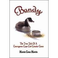 Bandy: The True Tale of a Courageous Cape Cod Canada Goose (BOK)