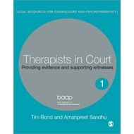 Therapists in Court: Providing Evidence and Supporting Witnesses (BOK)