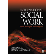 International Social Work: Issues, Strategies and Programs (BOK)