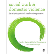 Social Work and Domestic Violence (BOK)