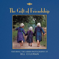 Gift of Friendship (BOK)