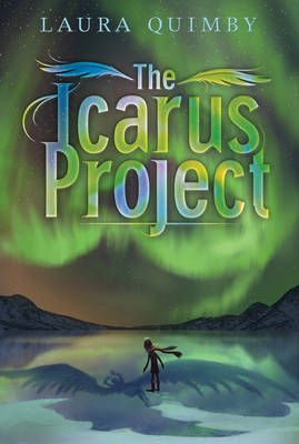 The Icarus Project (BOK)