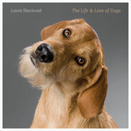 Life and Love of Dogs (BOK)