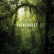 Rainforest (BOK)