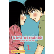 Kimi ni Todoke: From Me to You, Vol. 4 (BOK)