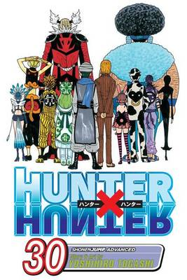 Hunter X Hunter, Volume 30 (BOK)