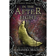 In the Afterlight (a Darkest Minds Novel) (BOK)