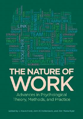 The Nature of Work: Advances in Psychological Theory, Methods and Practice (BOK)
